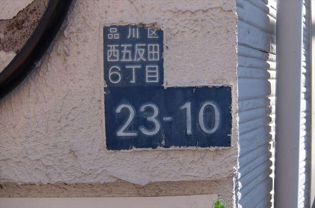 DSCF1004_R.JPG